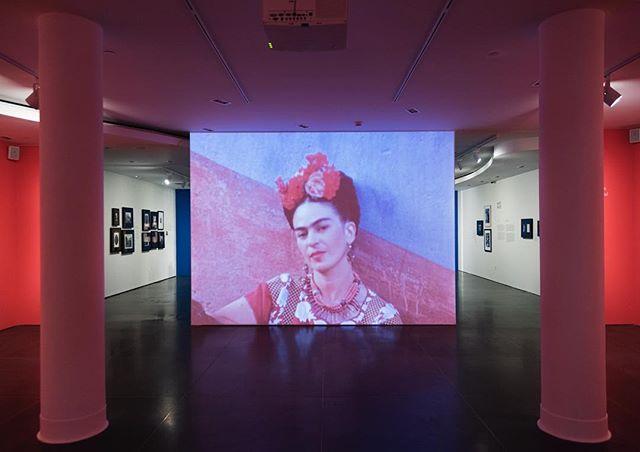 Recorre La Casa Azul de Frida Kahlo