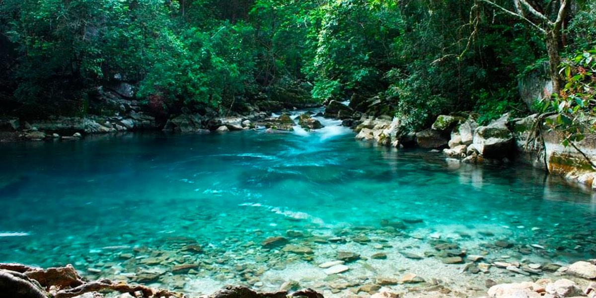 EL CIELO TAMAULIPAS 24 September 2020 Los 5 bosques más bonitos de México