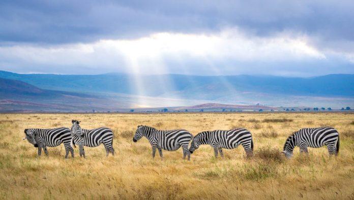 7 lugares imperdibles de África