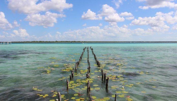 Viaja con seguridad al Caribe mexicano