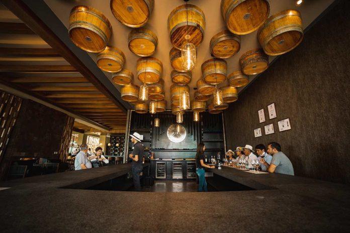 Tres Raíces: una experiencia vinícola 360 en Guanajuato