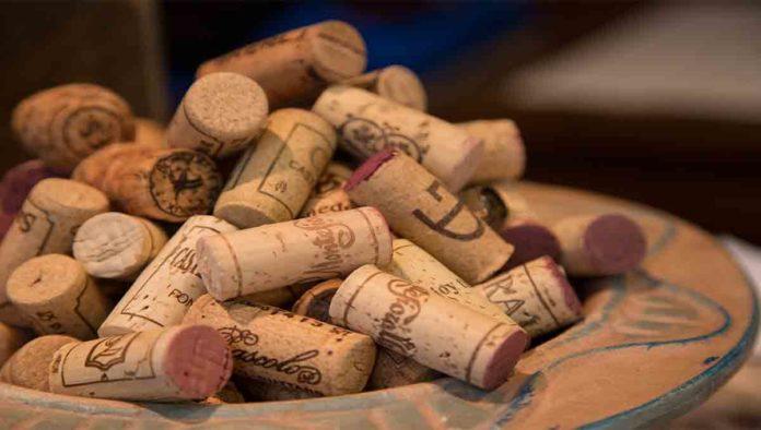 Guía para la Vendimia 2020 de vinos en Querétaro