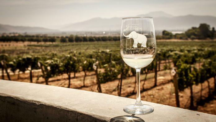 Historia de la copa de vino