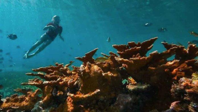 Isla mujeres, Pueblo Mágico de Quintana Roo