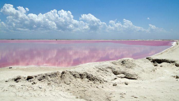 Las Coloradas, Yucatán