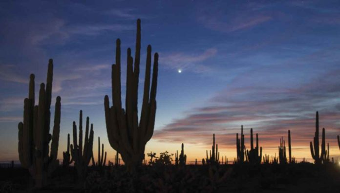 5 destinos imperdibles de Sonora