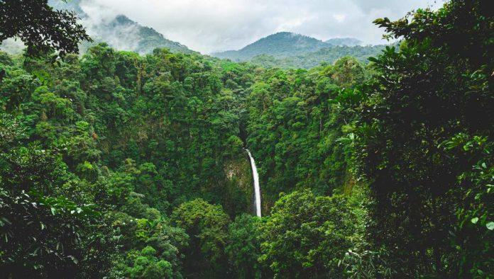 Costa Rica apuesta por el ecoturismo para reactivarse