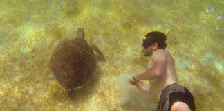 Akumal playa de Quintana Roo