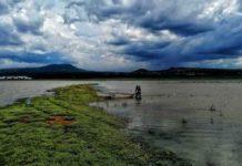 Ven a conocer el hermoso Lago de Camécuaro, en Michoacán