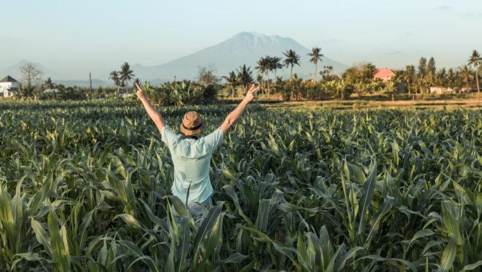 Booking.com: ¿cómo viajarán los mexicanos en el futuro?