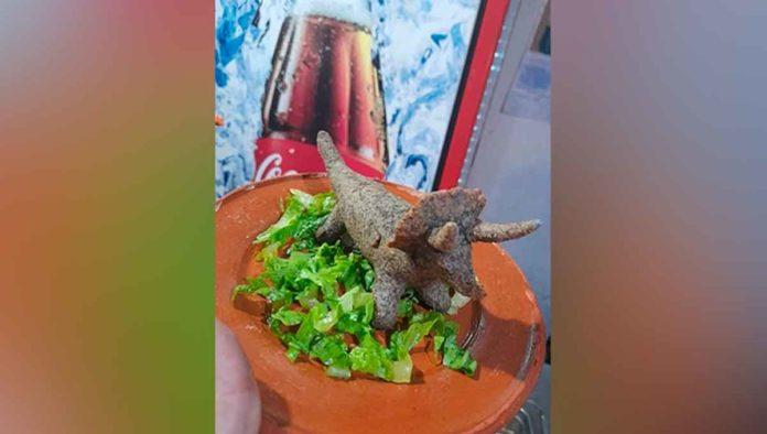 Dinoquesadillas , para un hambre de dinosaurio