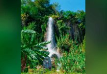 Tres de los tesoros de la costa de Yucatán