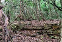 Capilla de las Ánimas - El pequeño secreto en Peña de Bernal