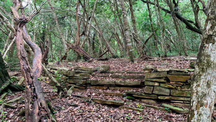 Conoce la Zona Arqueológica El Sabinito, en Tamaulipas