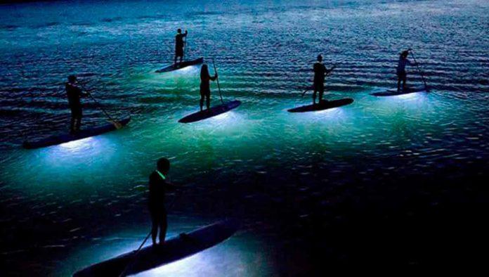 Luz y paddle board en el Mar de Cortés