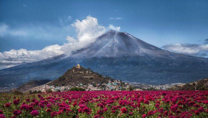 Video: detectan actividad volcánica con ceniza en el Popocatépetl