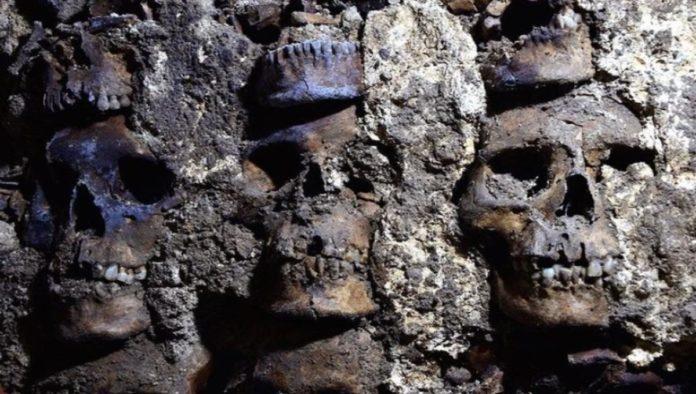 INAH halla 119 cráneos del Huei Tzompantli de Tenochtitlán