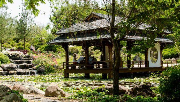 Jardines de México: siete áreas temáticas para explorar