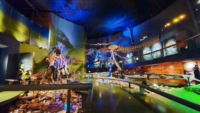 Conoce el increíble Museo del Desierto, en Saltillo
