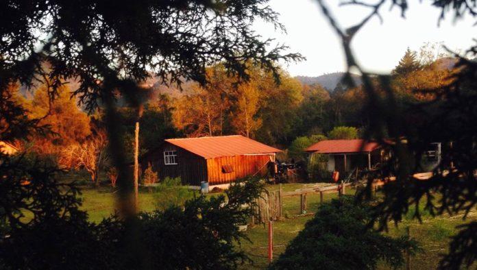 El Rancho Evergreen: descubre el estilo de vida que se lleva en el campo