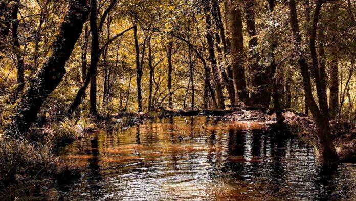 Ven a conocer la fantástica Sierra de Quila en Jalisco