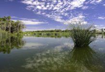 Santa Fe de la Laguna: donde la vida continúa durante la muerte