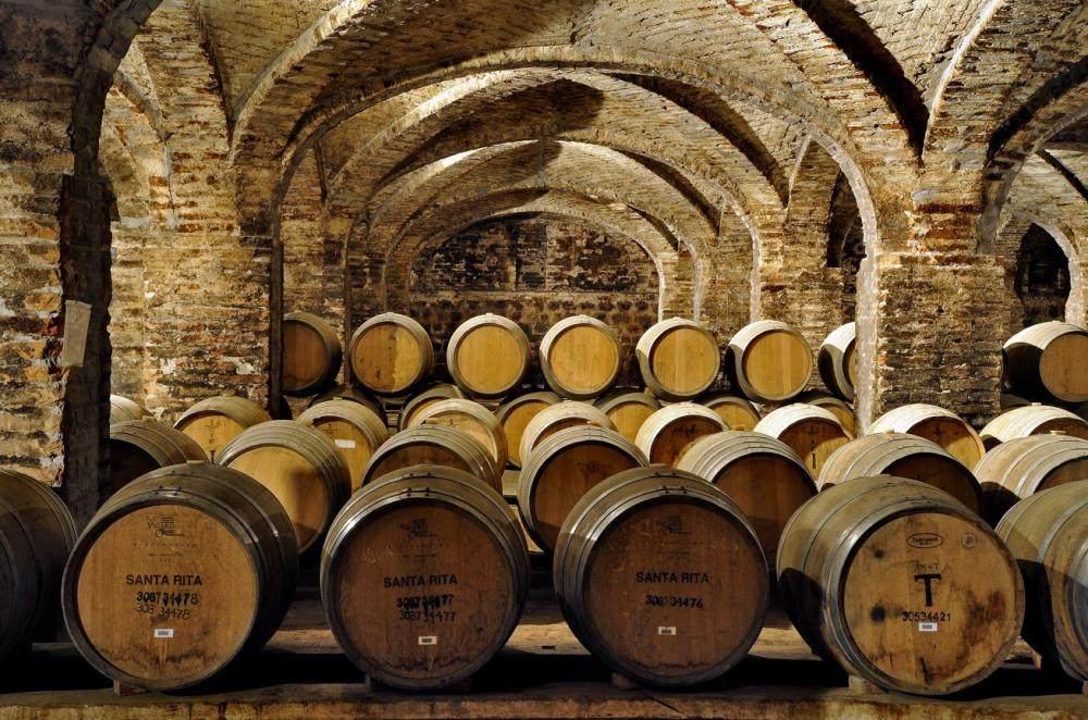 Viña Santa Rita, uno de los mejores viñedos del mundo
