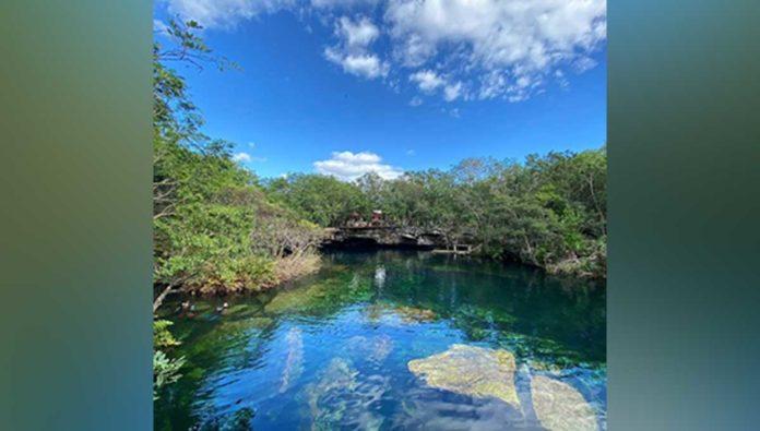 Ven y sumérgete en el cenote Cristalino, uno de los más hermosos de la Riviera Maya