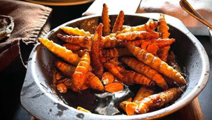 5 cosas que no sabías sobre los gusanos de maguey
