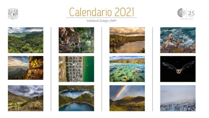 Instituto de Ecología de la UNAM comparte Calendario 2021 gratis