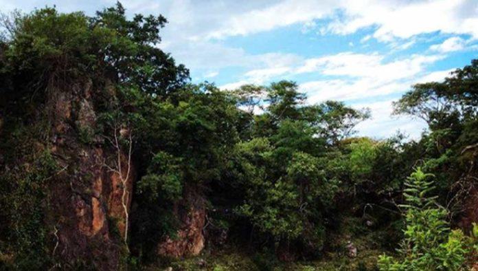 Vive una gran aventura en El Rosario Ixcatan Park Zapopan