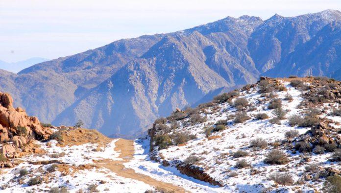 ¿Nieve en Baja California? De paisajes ocres a bosques albinos
