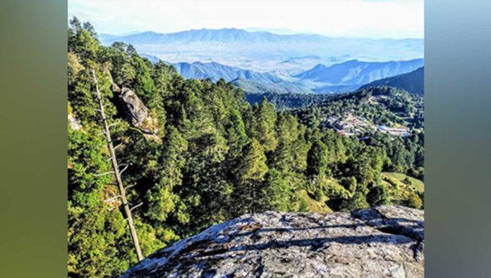 Parque Nacional Benito Juárez, el lado cooperativo del ecoturismo