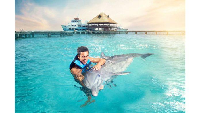 Eduardo Albor, CEO de The Dolphin Company,  reconocido como influyente en la recuperación de los destinos turísticos