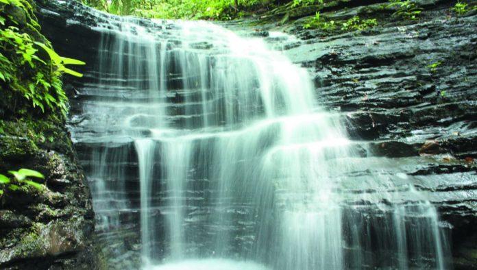 Agua Selva, un increíble santuario para la aventura en Tabasco