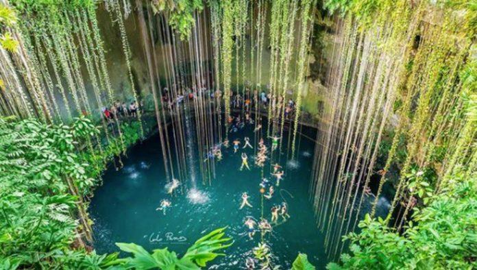 Sumérgete en la vida rebosante del cenote Ik Kil, en Yucatán