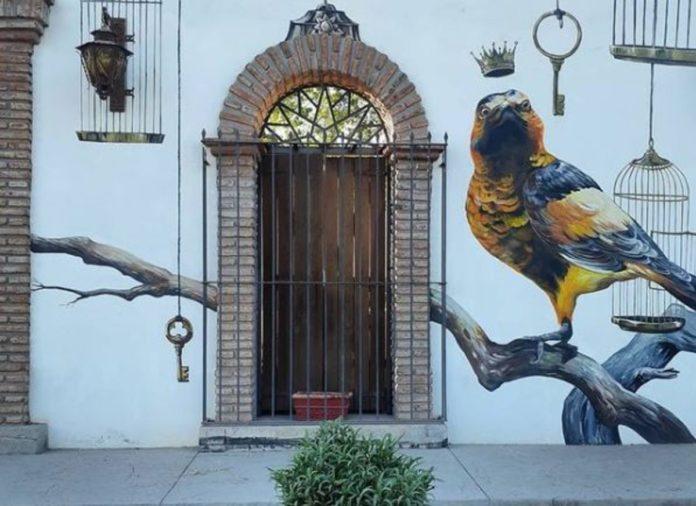 Cócorit, el pueblo de las aves en las paredes