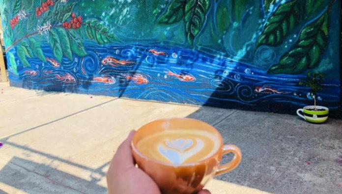 Historia Café, un lugar donde apapachan el alma