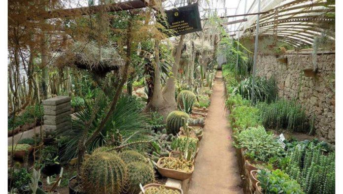 ¿Has oído habar de Jardín Botánico Quinta Schmöll?