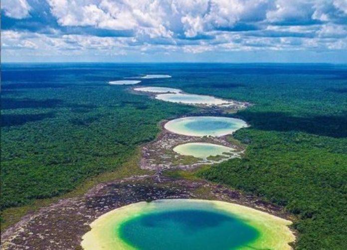 Much Kanan K'aax: reserva maya para la preservación de la selva en Quintana Roo