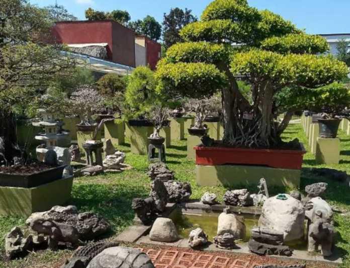 Museo Tatsugoro, el recinto que enorgullecería al Señor Miyagi