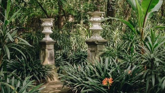 Historia del Parque Lira, un emblemático lugar en CDMX