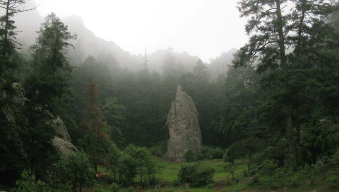 Parque Nacional El Chico, un cosmos boscoso para gozar al extremo