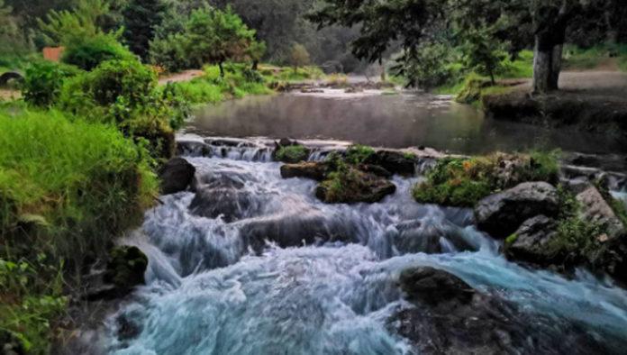 Reserva Ecológica Pancho Poza, un bello paraíso de Veracruz