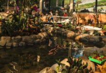 Museos que debes visitar en Monterrey