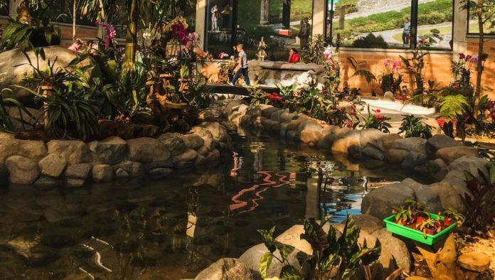 Biori: ¿ya conoces el jardín botánico de Orizaba?