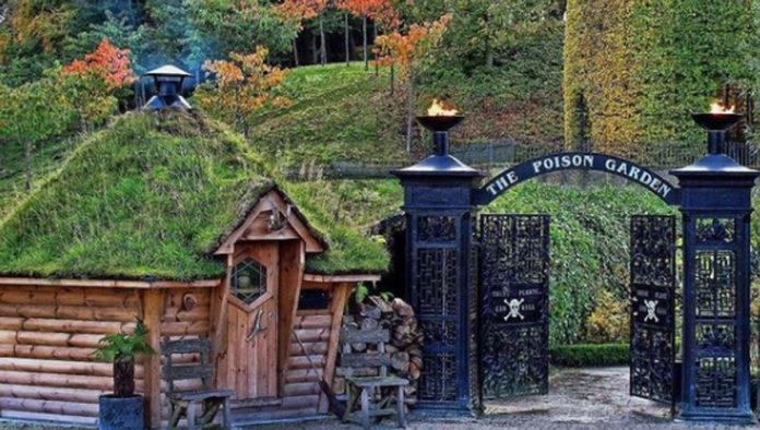Alnwick Poison Garden, el jardín más tóxico del mundo