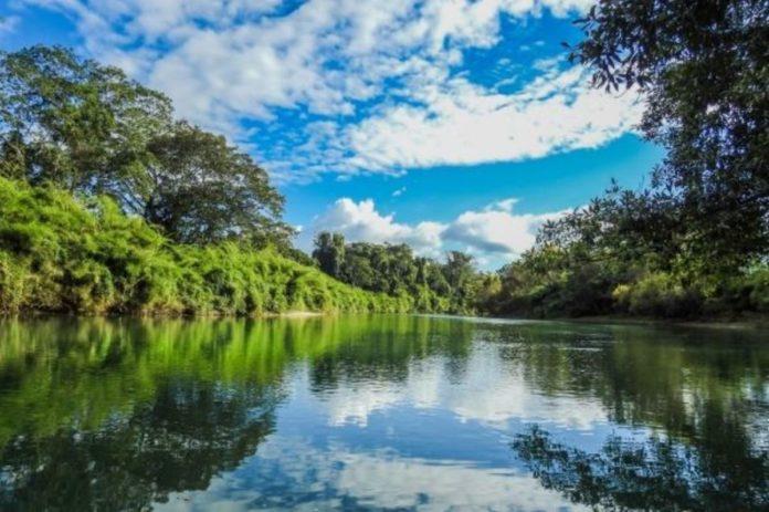 Las Guacamayas, el mejor lugar para descubrir la Selva Lacandona