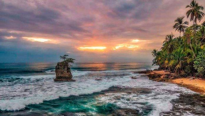 Lánzate a Manzanillo... en Costa Rica