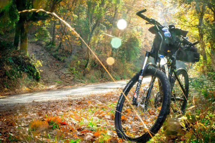 Óvelpaa, un refugio gastronómico para ciclistas en medio del bosque